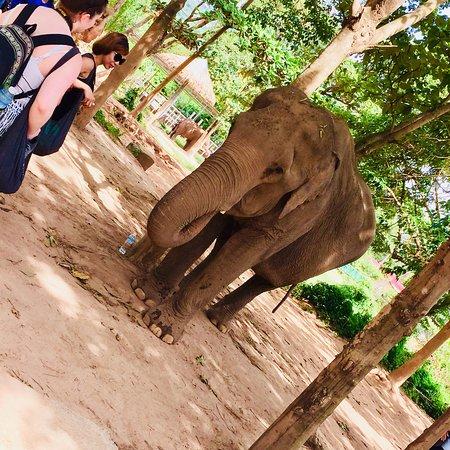 Bophut, Tailandia: photo5.jpg
