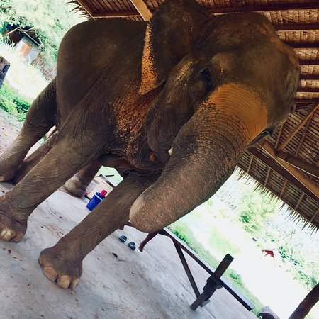 Bophut, Tailandia: photo6.jpg