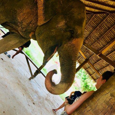 Bophut, Tailandia: photo7.jpg