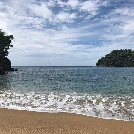 Englishman's Bay: photo4.jpg