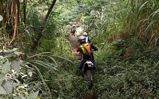 Bali Wilderness Dirt Bike - Day Tours: Bali Enduro Tours, Jungle Track