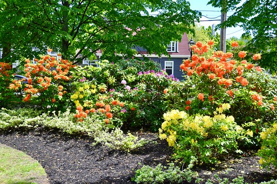 Charlottetown, Canada: Bright flower beds