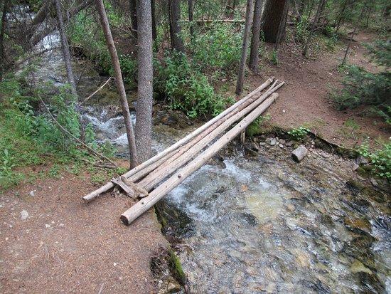 Big Willis Gulch Trail