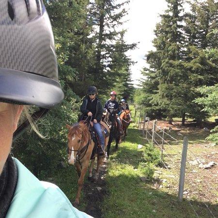 Free Rein Guest Ranch: photo0.jpg