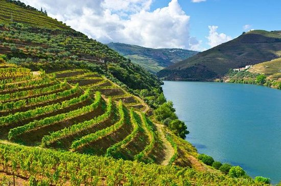 Douro Valley Full Day Private Tour...