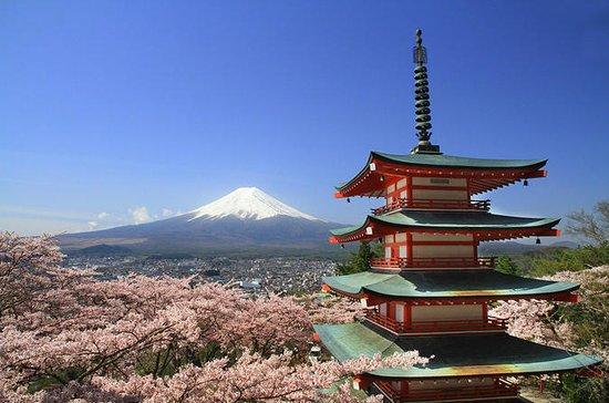 Multi-Day Osaka, Kyoto and Tokyo Bus...