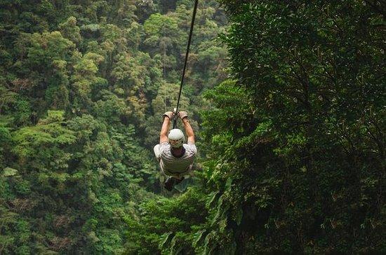 Ziplining & Wasserfall Abseilen...
