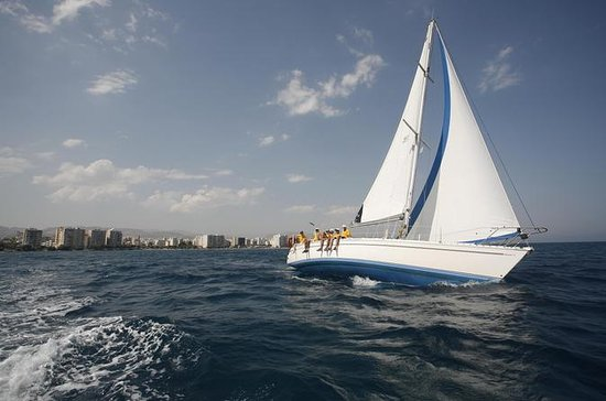 Privat halvdags cruise med en sejlbåd