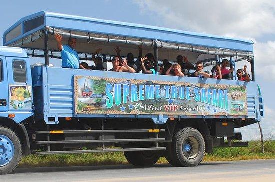 Safari tur hel dag fra Punta Cana