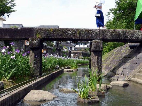 Takase Urakawa Brink Green Park
