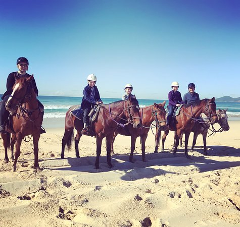 Fotografia de Horse About Tours