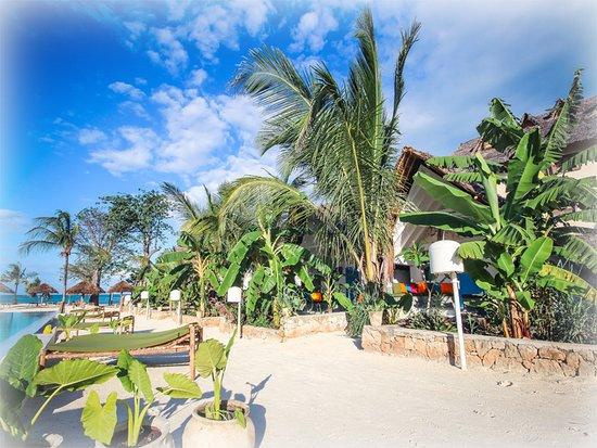 Fun Beach Resort Updated 2018 Prices Reviews Zanzibar Island Jambiani Tripadvisor