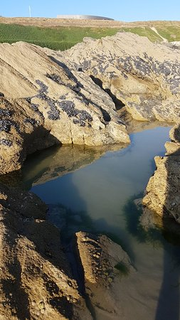 Fistral Beach: Snapchat-400783658_large.jpg