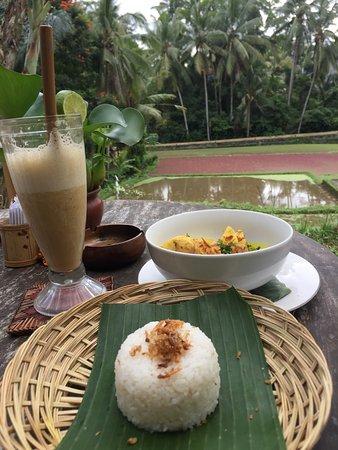 Labak Sari Restaurant: Chicken curry with smoothie