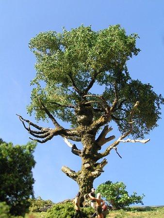 Brakel, Almanya: An der Wesersteiner Rockdisko steht dieser Rockerbaum. Auf Knopfdruck hat er den besonderen Blic