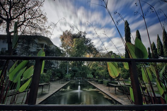 Stellenbosch University Botanical Garden: Submitted by regular visitor George Nel at the Lily Pond