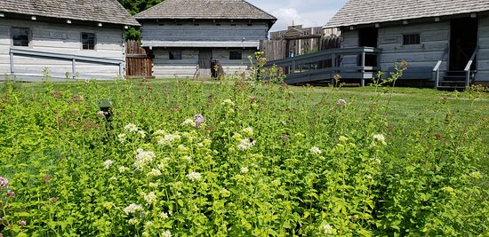 Steubenville, Огайо: An herb garden inside the Fort presents plants used for medicine and insect repellant.