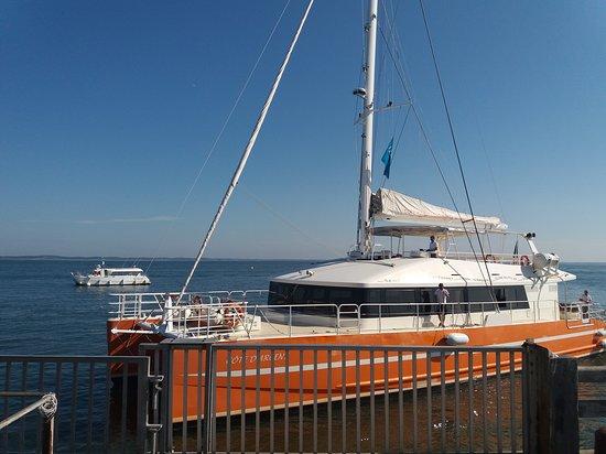 Arcachon, France : le catamaran pour la visite du bassin