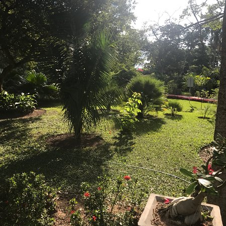 Jardin Botanico Santa Cruz: photo4.jpg