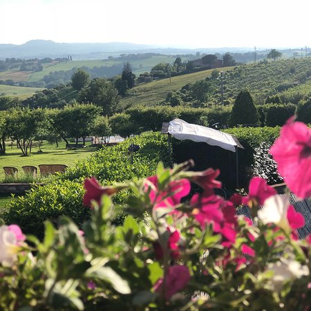 Petrignano, Itália: Country House Le Torri di Porsenna