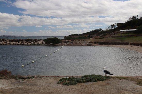 Kingscote, Australia: A nice pool