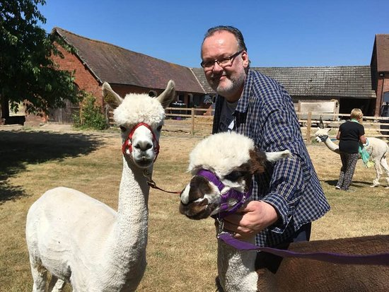 Middle England Farm Alpacas