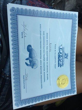 Bird's Underwater: Certificaat voor de kinderen