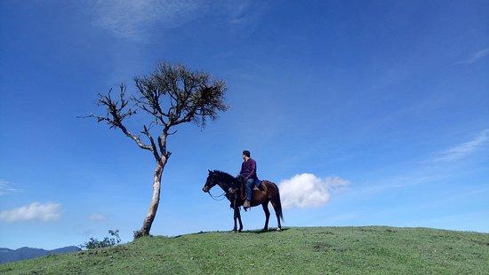 Nono, Ecuador: Paseo dentro de la hacienda Yumba Urqu.