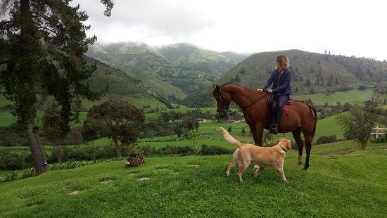 Nono, Ecuador: Vista desde Yumba Urqu Brunch.