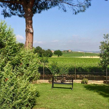 Abbadia di Montepulciano, Italy: photo2.jpg