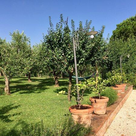 Abbadia di Montepulciano, Italy: photo3.jpg