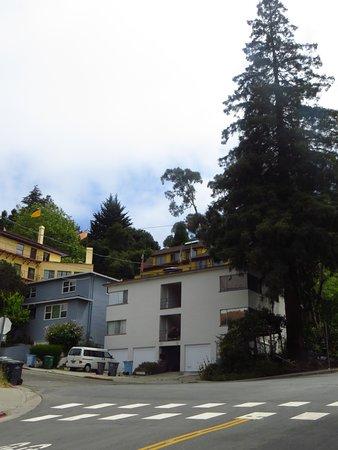 University of California, Berkeley: A Street
