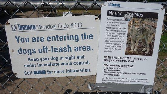 Placa de alerta sobre os coiotes  - Picture of High Park
