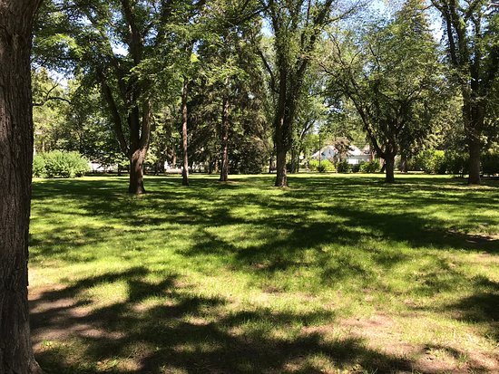 Ashworth Holmes Park: Shady Trees
