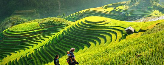 Vietnam Best Vacations