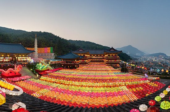 3-Day Round-Trip Tour from Busan to...