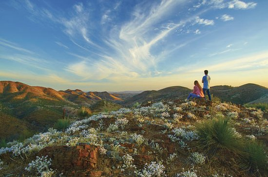 Outback Tour de Flinders Ranges de 4...