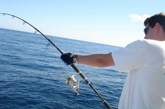 6-hour sport fishing by boat from...