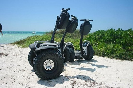 Coastal Segway Adventure in Freeport