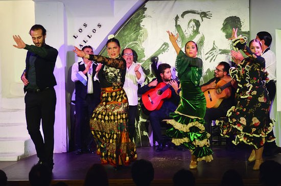 Flamenco-Eintrittskarte in Los Gallos
