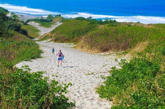 Fiji Heritage & Cultural Tour