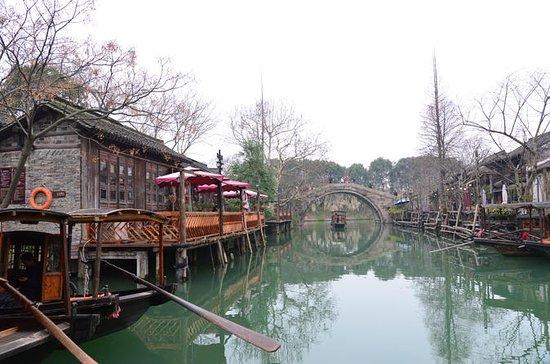 Excursion d'une journée à Wuzhen et...
