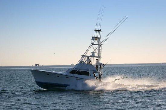 Deep Sea Fishing Professional Day Trip...