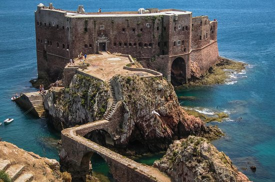 Berlenga Island Full Day Tour fra...