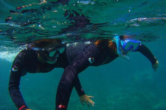 Snorkeling en una maravillosa bahía...