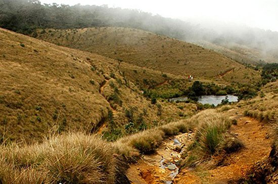 Horton Plains-World's End Tour de...