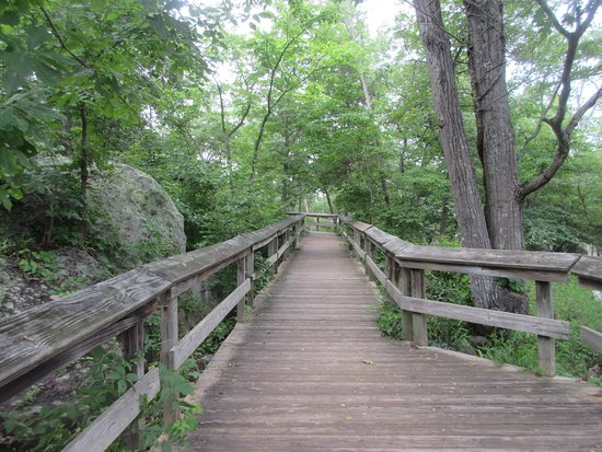 Potomac, MD: Trail like this will take you to the Falls