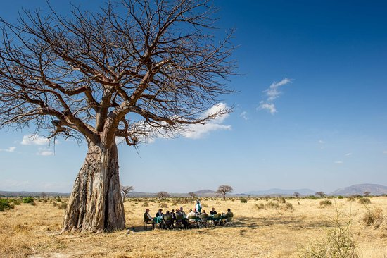 Ruaha National Park, Tanzania: All of Ruaha in front of you