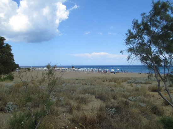 Potamos Beach: Вид от экологической тропы