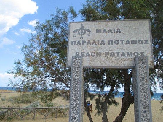 Potamos Beach: Вход на пляж